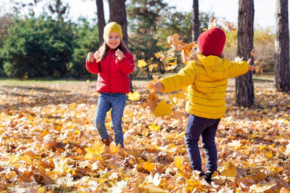 Family Fun: A-Z Activities for Fall Festivities